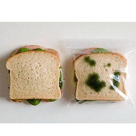 Anti-diefstal lunchzakjes