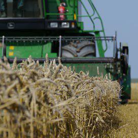 Brussel: EU oogst meer graan