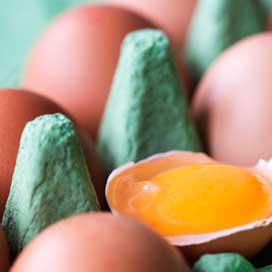 Beko waarschuwt voor te warme verwerking eieren