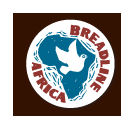 Bak brood, blog en help Afrika