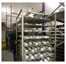 Veilig werken in koel- en vriescellen