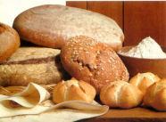 'Brood maakt niet dik