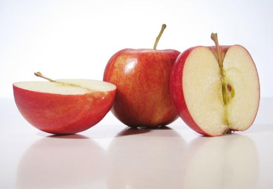 Voorbereidingen grootste appeltaart ter wereld