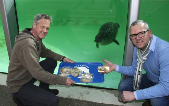 Bakkerij Puur Dunselman maakt zeehondjes