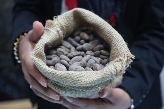 Chocoa 2016 steekt in op toekomst van chocolade