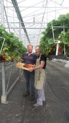 Aardbeien kweker 30 236x420