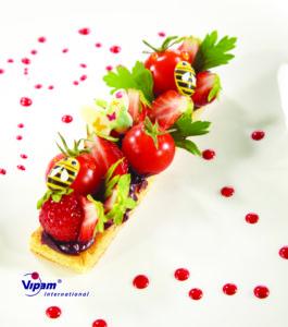 foto 6 vipam