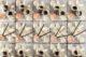 Oranjekoek drachten bakkerij gosse tjoelker creme def lichter e1500986457352 80x53