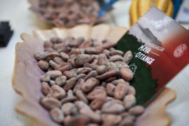 Chocoa zet in op 100 procent duurzame chocolade