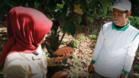 Cargill tevreden over eigen aanpak duurzame cacaosector
