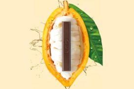 Nestlé ontwikkelt pure chocolade uit enkel cacaovrucht