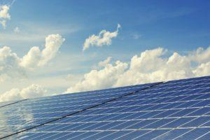 Enorme duurzaamheidsslag Van der Grijn Bakkerijen